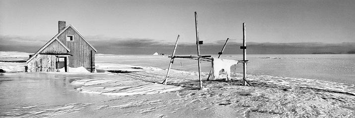 11_Paolo-Solari-Bozzi----Kap-Hope-Scoresbysund-East-Greenland-2016-3.jpg